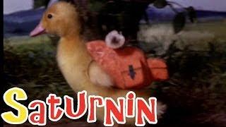 Saturnin - Saturnin à la campagne