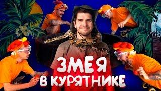 Download ДЖУНГЛИ: ЗМЕЯ В КУРЯТНИКЕ Mp3 and Videos