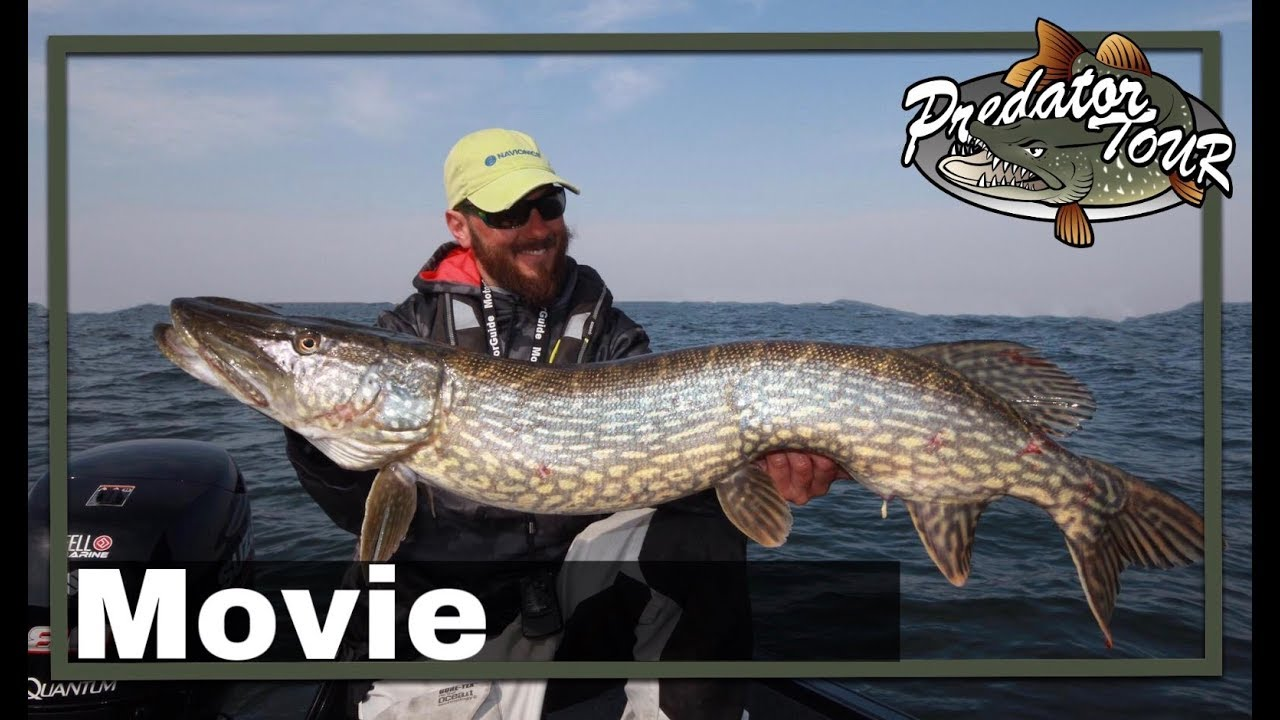 Fishing competition | Movie 2019 | PredatorTour Sweden 2019