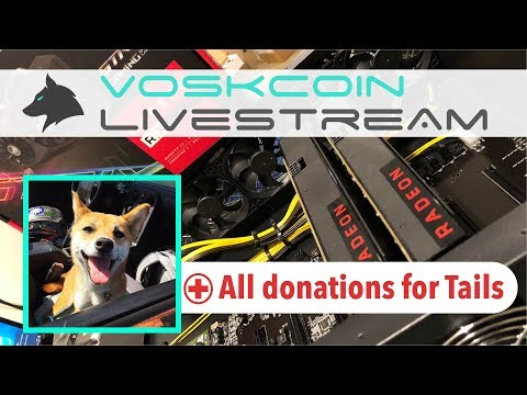 8x GPU Mining Rig Build Livestream + All Donations for Tails Medical + VoskCoin Q&A