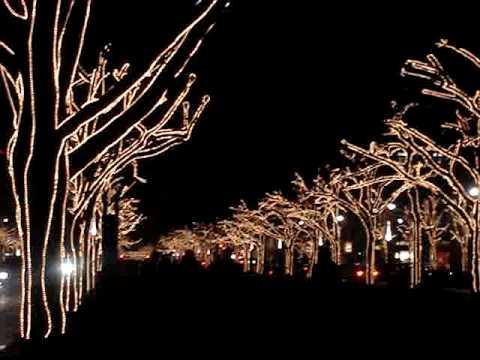 Unter Den Linden Weihnachtsbeleuchtung.Weihnachtsbeleuchtung Unter Den Linden