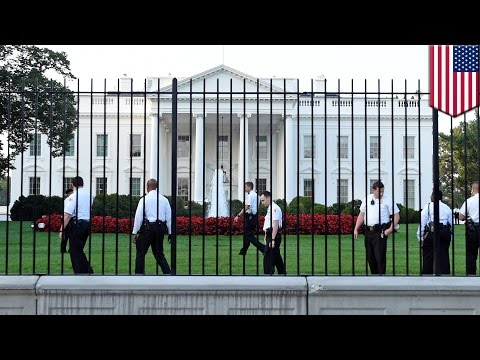 White House security breach: man climbs fences, makes it past the front door