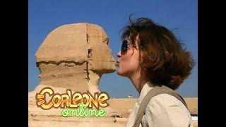 Corleone Online | Nitro Month of August (egypt)
