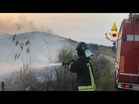 شاهد: رجال الإطفاء الإيطاليون يكافحون الحرائق المستمرة على سواحل صقلية والبحر الأدرياتيكي…  - نشر قبل 32 دقيقة