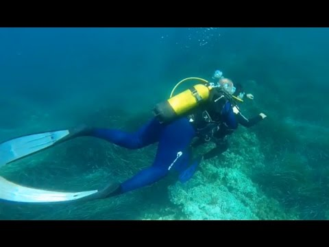 Scuba diving and Snorkeling in Cannes