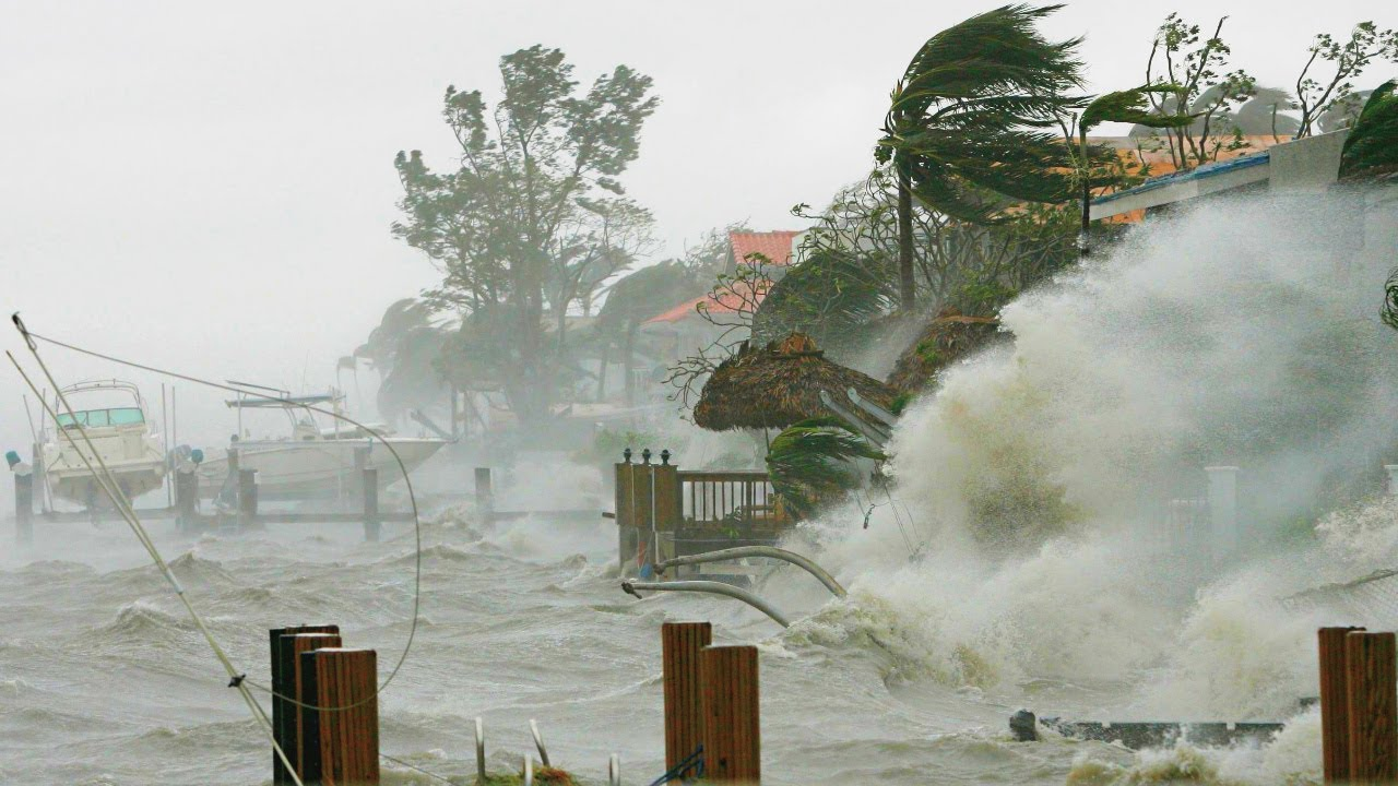 Download 170 km/h (105 mph)️ ❗ Tropical cyclone Seroja passed through 1000 km (621 mph) of Western Australia.