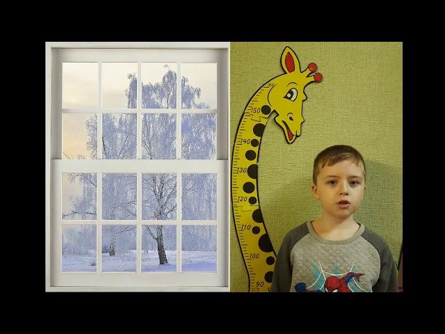 Изображение предпросмотра прочтения – РоманЛеонтьев читает произведение «Белая береза под моим окном» С.А.Есенина