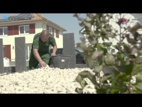 Bichon à poil frisée in Darmstadt von YouTube · Dauer:  41 Sekunden