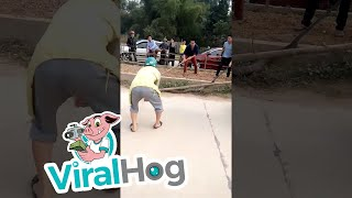 بالفيديو| ثعبان ضخم يعطل حركة المرور