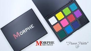 new morphe brushes 12p picasso palette