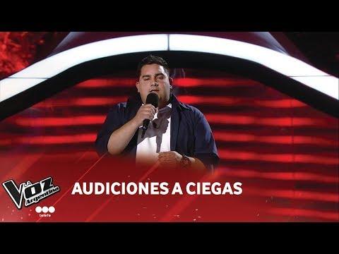 Pablo Díaz  Nada es para siempre  Luis Fonsi  Audiciones a ciegas  La Voz Argentina 2018