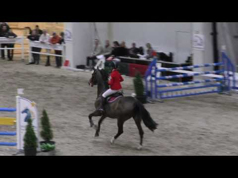 Aarnio-Wihuri Jenny & Holde Maid 130cm @ Helsinki Horse Fair 17.-19.3.2017