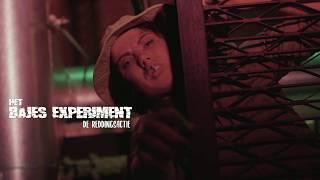 Het Bijlmer Experiment seizoen 2