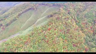 紅葉&稲刈り風景