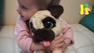Живая игрушка собачка подарок на 8 марта Fur Real Friends интерактивная игрушка. The dog as a living