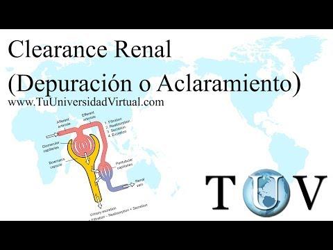 Clearance Renal (depuración o aclaramiento renal) Fisiologia