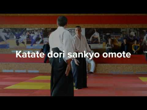 Aikido techniques  c/o Eric Besson