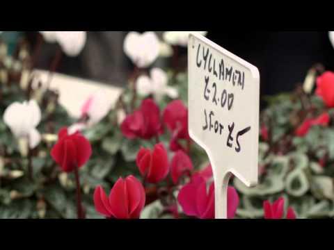 London Farmers Market - Promotional Video