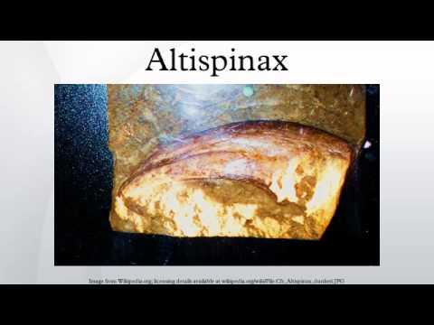 Altispinax