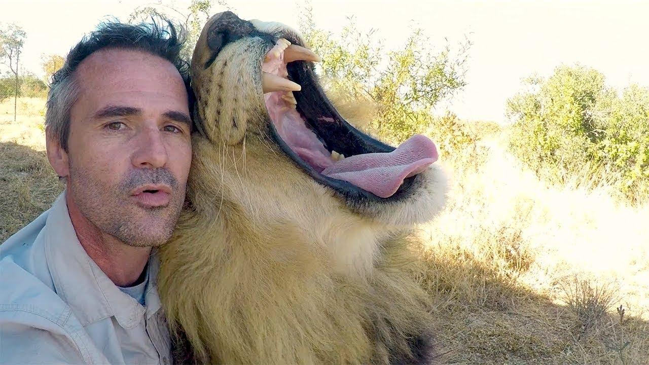 Animals Unique Bond | The Lion Whisperer
