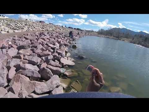Fishing At Quail Lake!