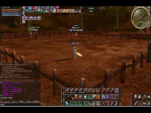 Lineage 2 GLadi vs Gladi  Darkzone.net Huncok vs MrTigerr (part 1)