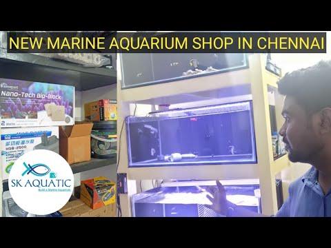 New Marine Aquarium Shop In Chennai   Tamil   SK Aqua   SK Aquatic  