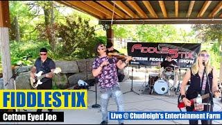 Cotton Eyed Joe cover by Fiddlestix