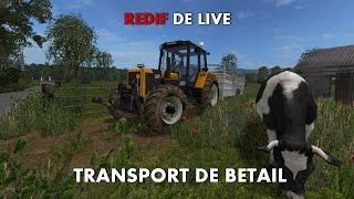 Les Coulisses D'une Saison a la Ferme ! Transport de bétail et Foin !