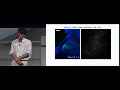 """Karl Deisseroth: Lighting the Brain (DARPA """"Wait, What?"""")"""