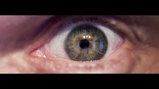 het-krachtigste-geneesmiddel-voor-het-gezichtsvermogen-ter-wereld