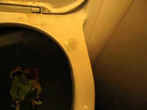 FLUSHING DISGUSTING AIRPLANE MEAL DOWN VACUUM TOILET!!!