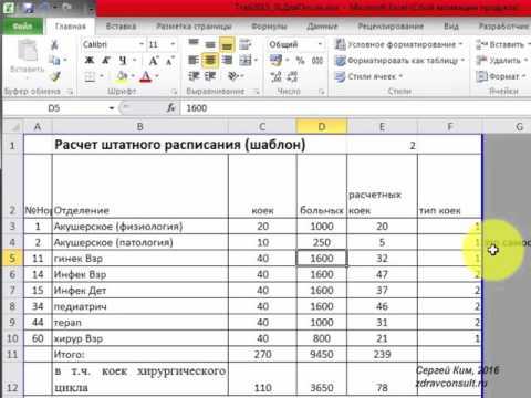 Расчёт штатного расписания клинических и параклинических подразделений больницы