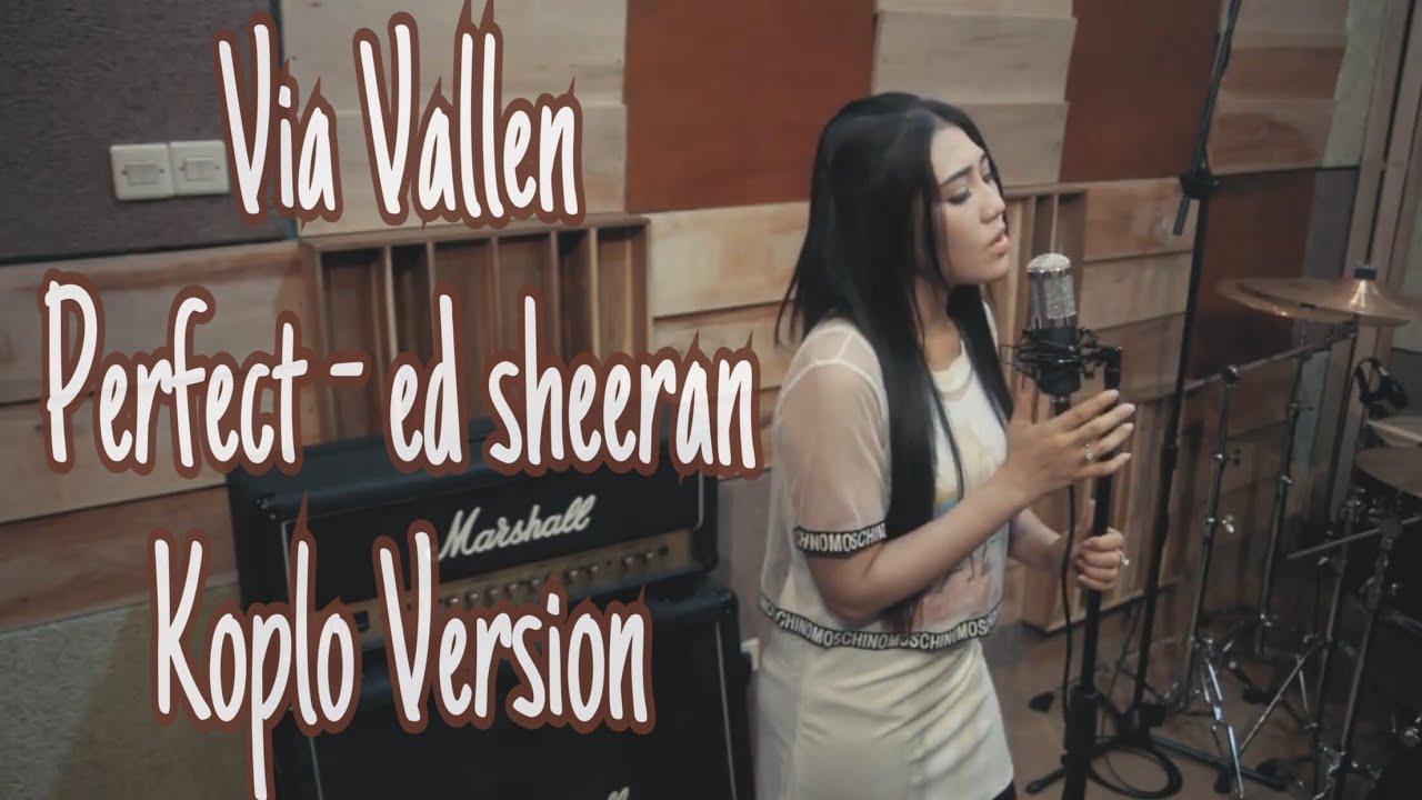 Via Vallen - Perfect  ( cover ) Koplo Version #1
