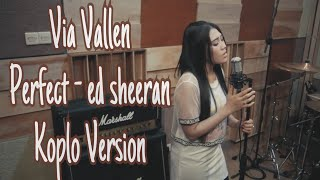 Download lagu Via Vallen - Perfect  ( cover ) Koplo Version
