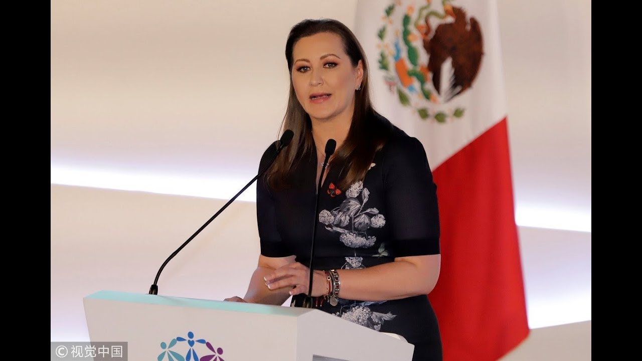 Mexico's Puebla Governor Dies in Helicopter Crash #Martha Erika Alonso