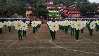 Flower drill - sports day