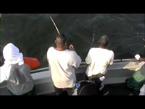 Bluefish queen mary party boat charter blue fishing youtube for Queen mary fishing report