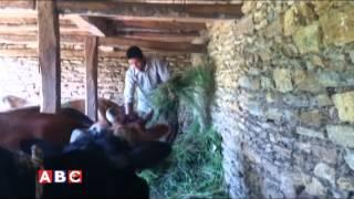 Gaipalan Gulmi report by Bishnu 2071 07 01