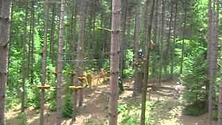 tree trekking ganaraska