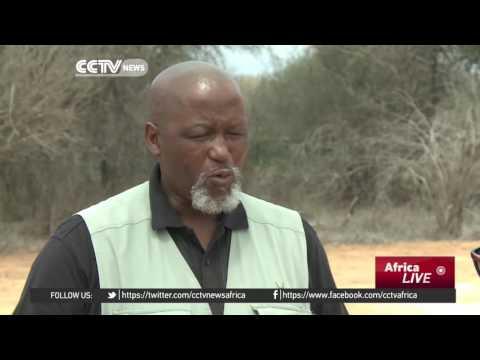 Kruger rangers step up anti-poaching efforts