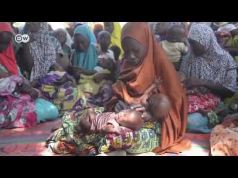 New warning of famine in Nigeria
