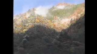 紅葉前線~木沢村