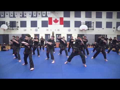 Energy Karate Video - Toronto, Canada