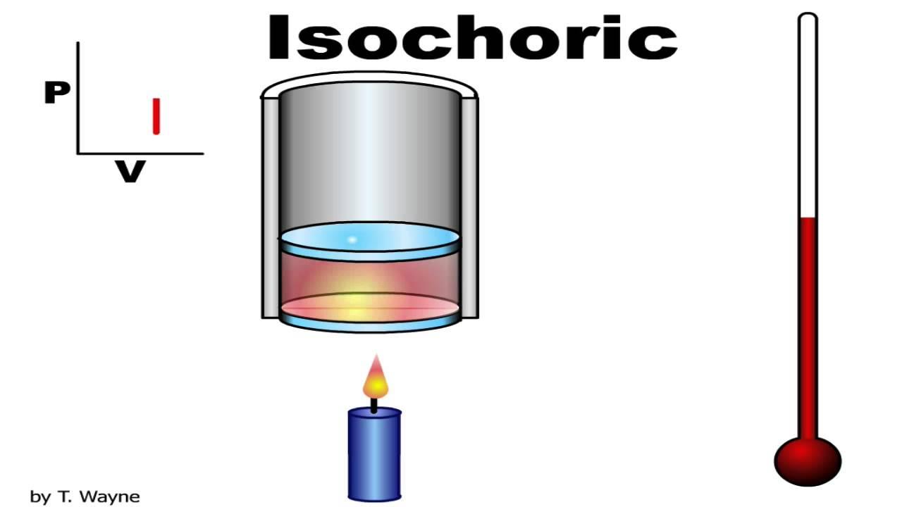 Isochoric Isovolumetric Animation Youtube