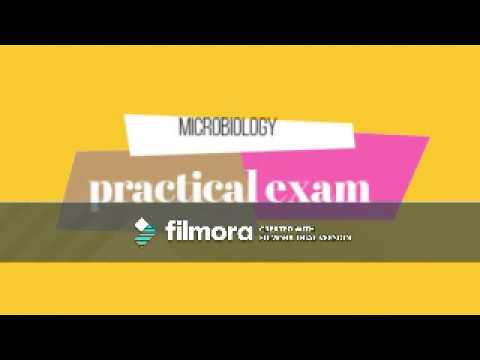 MicroBiology ; Practical revision