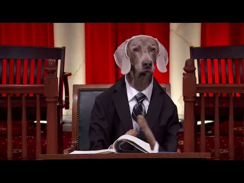 FCC v. Fox Television Stations: Oral Argument - January 10, 2012