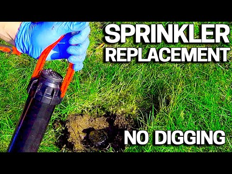 Sprinkler Head - No Dig Replacement - No Special Tools