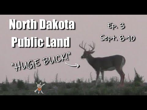 Public Land Whitetail Deer Hunting |