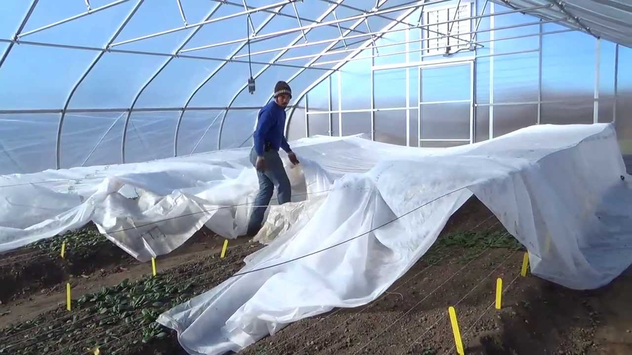 high tunnel greenhouse design layout youtube